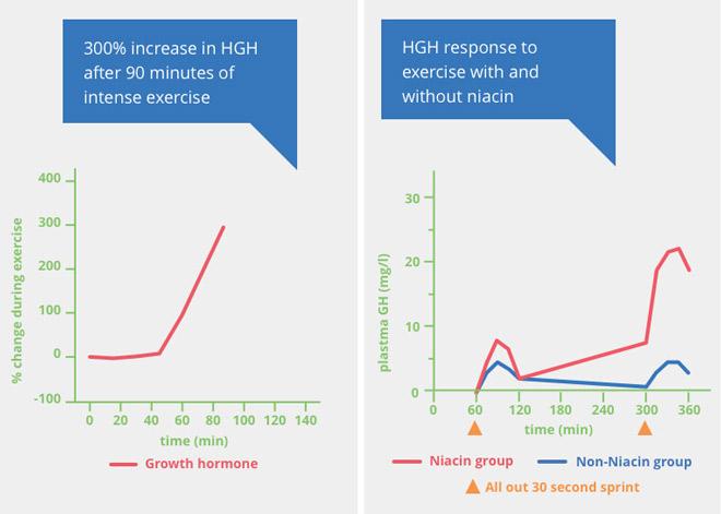 NiacinMax: 45 kartų efektyvesnis nei bet Niacinas papildymo